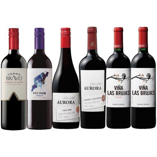 南米人気3ヵ国デイリー赤ワイン6本セット 【7786635】   チリ ウルグアイ ブラジル 飲み比べ ワイン ワインセット wine wainn フルボディ