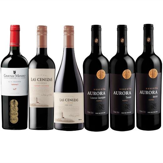 【送料無料】金賞入り!南米人気3ヵ国樽熟赤ワイン6本セット【7786636】   チリ ウルグアイ ブラジル 飲み比べ ワイン ワインセット wine wainn フルボディ