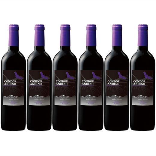【送料無料】コンドール・アンディーノレセルバ・マルベック 1種6本セット アルゼンチン フルボディ 赤ワイン ワインセット  【7786652】