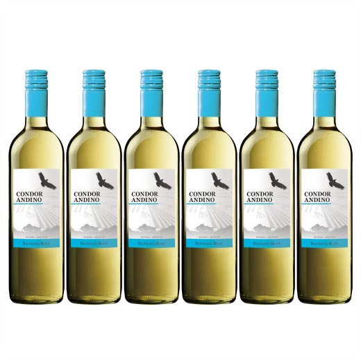 コンドール・アンディーノ・ソーヴィニヨン・ブラン 1種6本セット アルゼンチン 辛口 白ワイン ワインセット  【7786655】