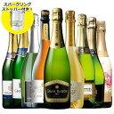【 特別 送料無料 】【ストッパー付】金賞&高評価&シャンパン製法入り!世界の選りすぐり辛口スパークリング9本セッ…