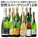 【送料無料】56%OFF 金賞シャンパン&ワイン王国五ツ星カバ入り!世界銘醸国の泡12本セット 第4弾【7792884】 ワイン…
