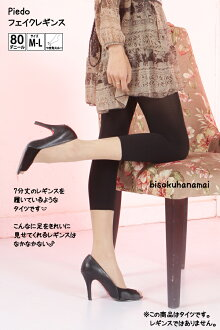 Fake regions tights (black, made in Japan) ♪ pantyhose, patterned tights, Garter pattern, sheer tights stocking tights ladies!-ZB