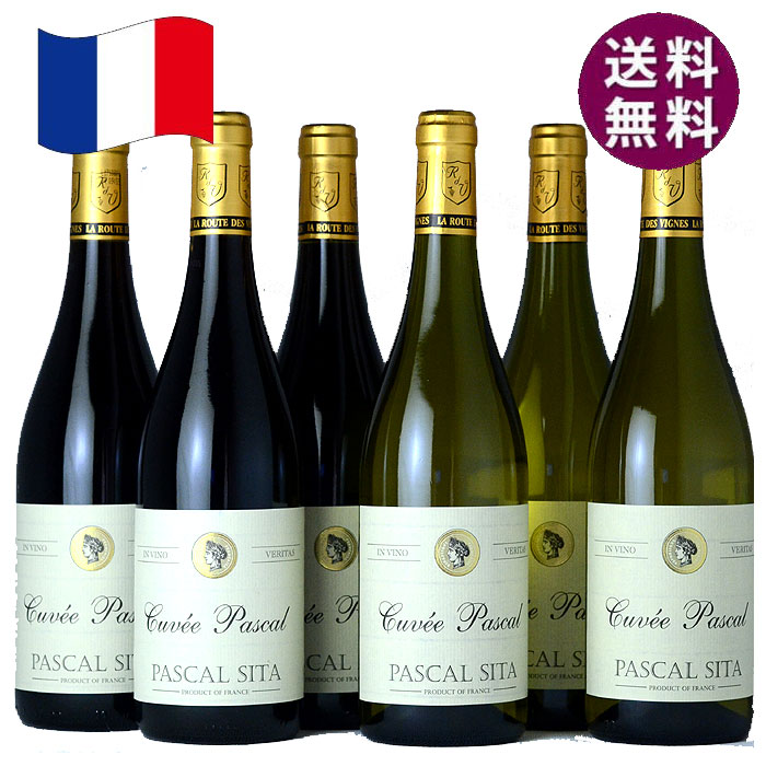 パスカルシータ キュベ 6本セット おすすめデイリーワイン