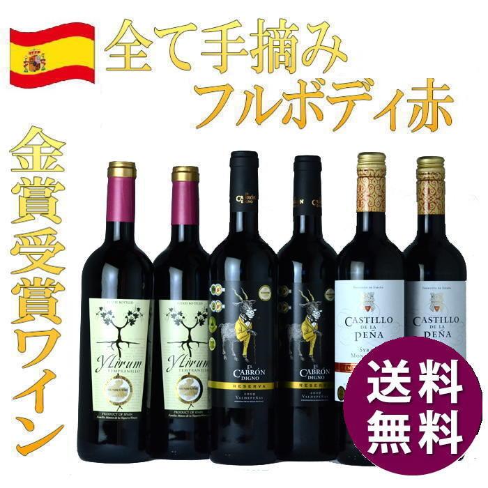 金賞受賞『スペイン極うま赤ワイン6本セット』ワイン セット 送料無料