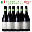 ヴィヌーヴァ 赤 ワイン 6本セット オーガニックワイン ワイン 福袋 イタリア 飲み比べ ワインセット