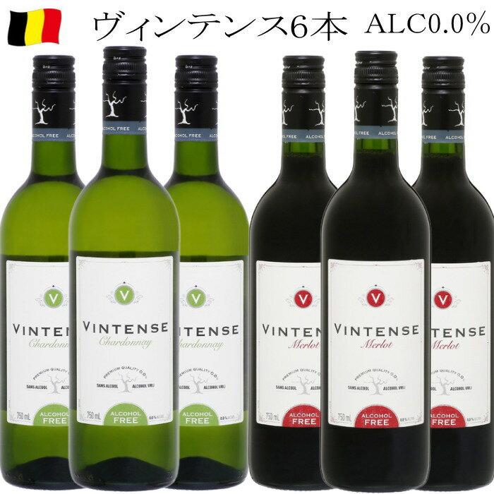 ヴィンテンス ベルギー スタッセン ノンアルコールワイン 6本セット 送料込み