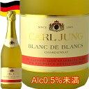 カールユング スパークリングシャルドネブランドブラン アルコール シャンパン フロスティボトル