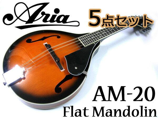 【嬉しい5点セット!】Aria/アリア AM-20 ベーシックモデル フラットマンドリン カントリーミュージックやブルーグラスに!【RCP】【P5】