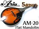 【嬉しい5点セット!】Aria/アリア AM-20 ベーシックモデル フラットマンドリン カントリーミュージックやブルー…