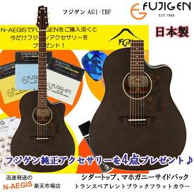 今ならプレゼント付き♪ アコースティックギター フジゲン 国産ギター AG1-TBFFUJIGEN 【P5】