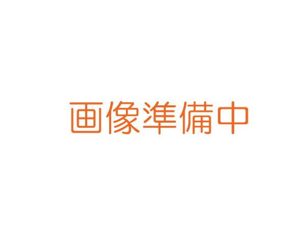 【メール便発送商品】SUZUKI/スズキ RP-13M(SU-13M用) Am調 交換用リードプレート 鈴木楽器製作所【RCP】