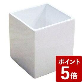 【P5倍】ホワイトキューブ ホルダー ホワイト センコー
