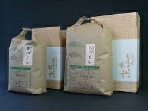 【送料無料】福岡県産 夢つくし(七分づき) 5kg【ファーム藤木】お米 令和3年産 産地直送