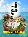 【送料無料】【福岡県産】豊前海 一粒牡蠣 殻付き かき/牡蠣 3kg(中粒/45〜60個入り)【産地直送】