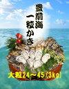 【送料無料】【福岡県産】豊前海 一粒牡蠣 殻付き かき/牡蠣 3kg(大粒/24〜45個入り)【産地直送】