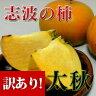 【送料無料】(朝倉市特産品)(まぼろしの柿)訳あり!福…