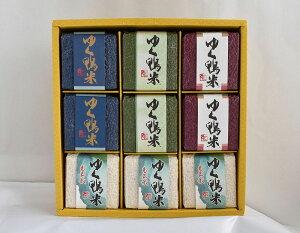 合鴨農法特別栽培米真空パックもち米入り食べ比べセット 9個