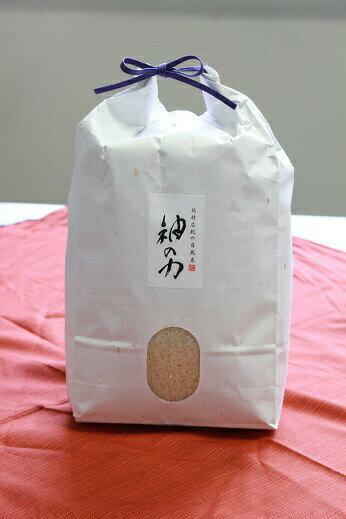 【送料無料】北村広紀の自然米「神の力」5kg