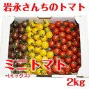 Iwanaga_tomato_12