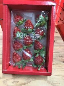 【送料無料】佐賀県白石町の苺「真紅の美鈴」 1パック イチゴ 黒いちご 苺 岸川農園 ギフト 贈り物