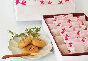 【送料無料】基山の四季を彩る 生つつじ餅【あびにょん】ギフト 産地直送