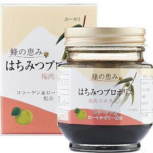 サンフローラ [蜂の恵み] はちみつプロポリス(梅肉エキス入)150g×6個セット<ブラジル産ユーカリはち蜜使用>