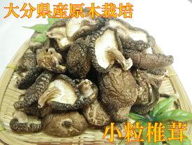 【送料無料】なばやの小粒椎茸100g入り【大分産原木椎茸!生産者直売♪】
