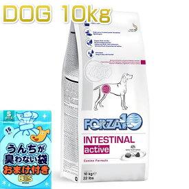 おまけ付き!最短賞味2020.11・フォルツァ10 犬 インテシティナル アクティブ 中粒 10kg大袋 胃腸ケア 成犬シニア犬ドッグフード FORZA10正規品fo00480