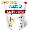 最短賞味2021.10・フォルツァ10 犬 デルモ アクティブ小粒2kg 皮膚被毛ケア犬用療法食FORZA10正規品fo01811