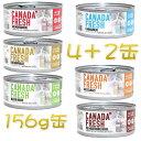 SALE 最短賞味2020.8・ペットカインド カナダフレッシュ 156g×6缶セット 全年齢猫用ウェット総合栄養食 キャットフード PetKind正規品pkc02993s