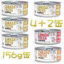SALE 賞味切迫2020.8・ペットカインド カナダフレッシュ 156g×6缶セット(2)全年齢猫用ウェット総合栄養食 キャットフード PetKind正規品pkc02993ss