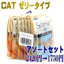 NEW シシア 猫 アソートセット パウチ ゼリータイプ×10個(5種×各2個) sccsc9成猫用ウェット 総合栄養食Schesir 正規品SALE