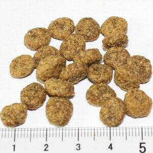 ソリッドゴールド/猫フィット/アズア/フィドル/キャット1.3kg