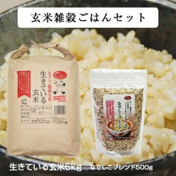 玄米雑穀ごはんセット(なでしこブレンド500g+生きている玄米5kg)