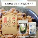 【玄米酵素ごはんお試しセット 生きている玄米3kg + 玄米酵素ブレンド150g + 天然塩50g】初回限定1セットまで/送料無…