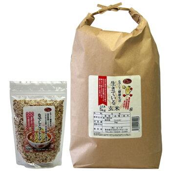 玄米酵素ごはんセット【定期購入】