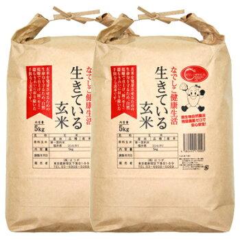 生きている玄米10kg