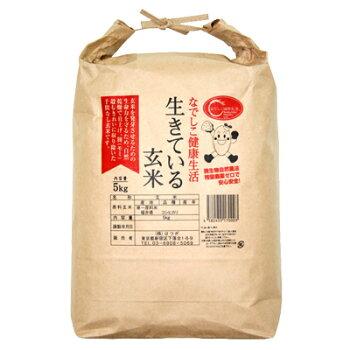 生きている玄米5kg【定期購入】