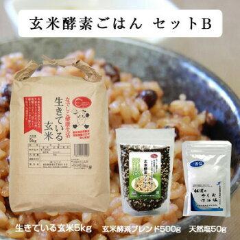 玄米酵素ごはんセットB(玄米酵素ブレンド500g+天然塩50g+生きている玄米5kg)