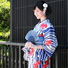 "Yukata set Lady high class still weave cotton yukata 3 pieces ""on White Navy Blue reeled stripes goldfish and aquatic plants"" yukata belt clogs women yukata set yukata weekend big size Torsades small size Petit"