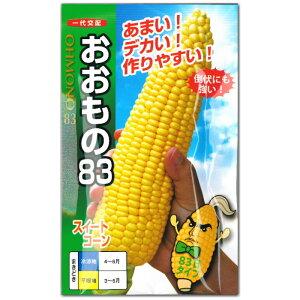 トウモロコシ 種子 スイートコーン おおもの83 60粒 とうもろこし