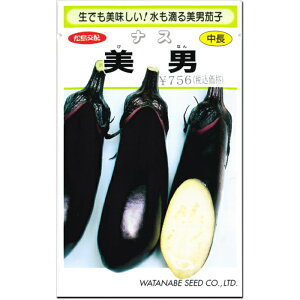 みずナス 種子 美男 0.6ml