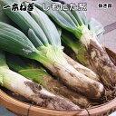 ねぎ苗・下仁田(抜き苗30本束)