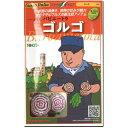 ビート 種子 ゴルゴ 80粒 【ラッキーシール対応】