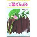 グリーンピース種子・ツタンカーメンのエンドウ豆(20ml)