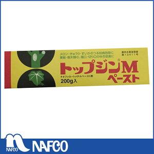 日本曹達トップジンMペースト200g