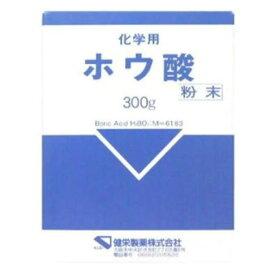 健栄製薬 ホウサン フンマツ 300g