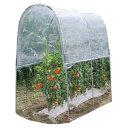 トマトの屋根 NT-18