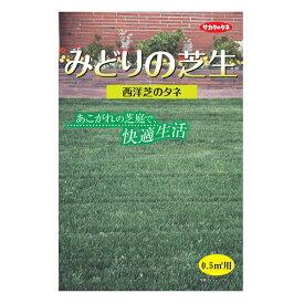 サカタのタネ みどりの芝生 小袋